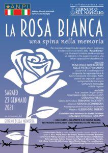 La rosa bianca – una spina nella memoria